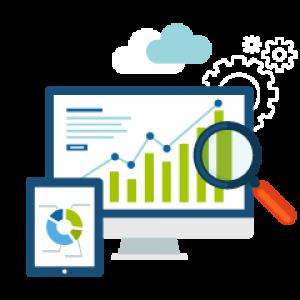 Online Presence Analysis Report